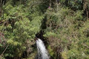Cachoeira do Grito - Rio Preto